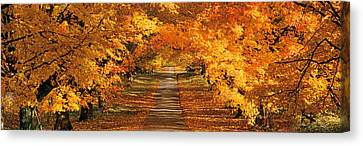 Usa, Maryland, Baltimore County, View Canvas Print by Panoramic Images