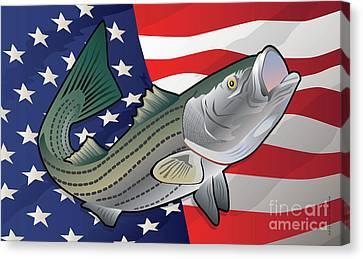 Usa Rockfish Striped Bass Canvas Print by Joe Barsin
