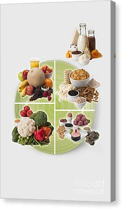 Usda Myplate Canvas Print by George Mattei