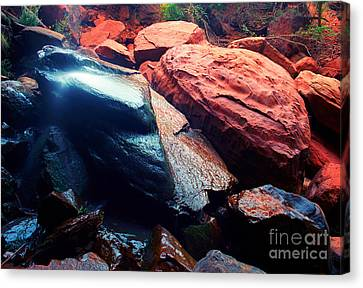 Utah - Emerald Pool Boulders Canvas Print
