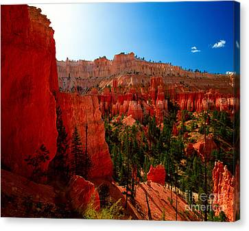 Utah - Navajo Loop Canvas Print by Terry Elniski