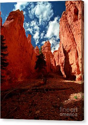 Utah - Bryce Canyon Canvas Print