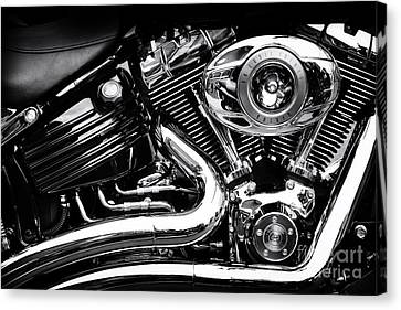 V Twin Canvas Print by Tim Gainey