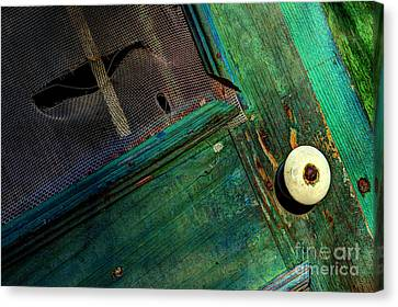 Screen Doors Canvas Print - Vacant Memories by Michael Eingle