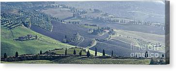 Alberi Canvas Print - Val D'orcia, Panorama by Luigi Morbidelli