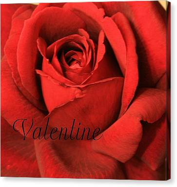 Valentine Canvas Print by Marna Edwards Flavell
