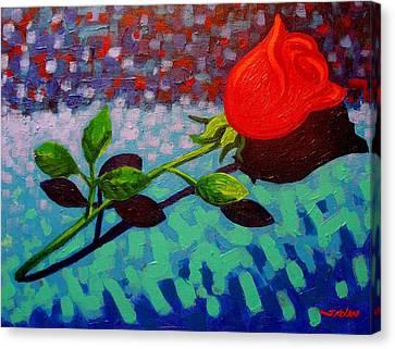 Valentine Rose Canvas Print by John  Nolan