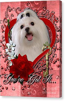Maltese Canvas Print - Valentines - Key To My Heart Maltese by Renae Laughner