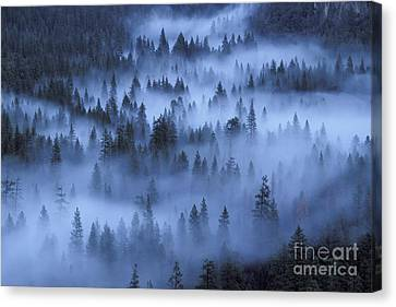 Canvas Print featuring the photograph Valley In Fog by Stan and Anne Foster