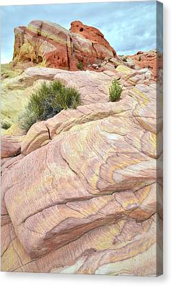 Valley Of Fire's Nike Rock Canvas Print by Ray Mathis