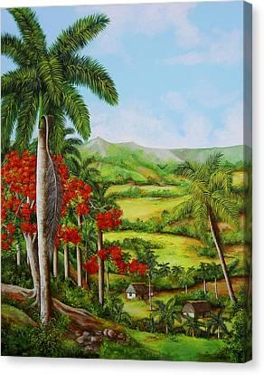 Royal Poinciana Canvas Print - Yumuri Valley by Dominica Alcantara