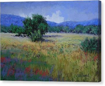 Valley View Canvas Print by Paula Ann Ford