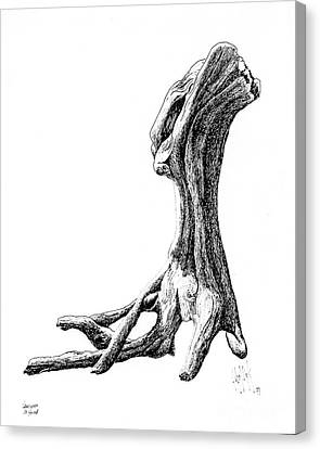 Vancouver Canvas Print - Vancouver Driftwood by Dorothy Hilde