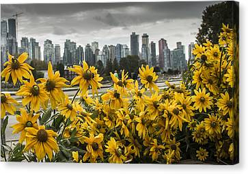 Vancouver Canvas Print by Robin Williams