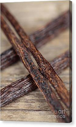 Vanilla Pods Canvas Print by Neil Overy