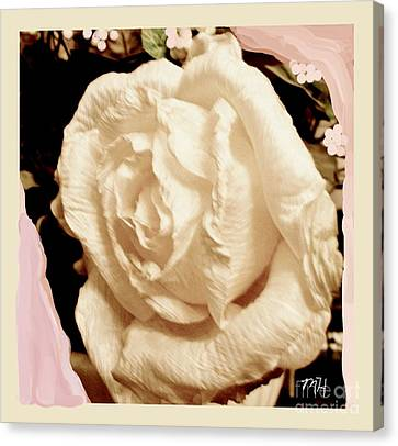 Curtains Canvas Print - Vanilla Rose by Marsha Heiken
