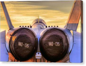 Vaq-135 Growler Canvas Print