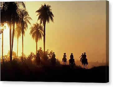 Vaqueros Return After Putting Cattle Canvas Print by O. Louis Mazzatenta