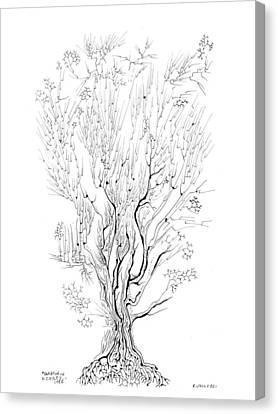 Variation On A Cayley Tree Canvas Print by Regina Valluzzi