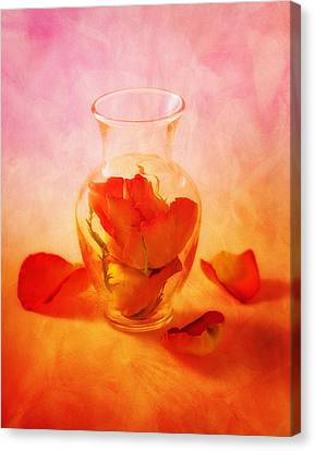 Rose Canvas Print - Vase Of Roses Still Life by Tom Mc Nemar