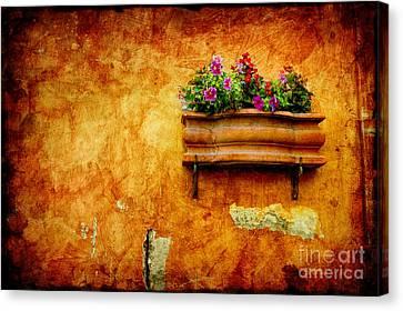 Vase Canvas Print by Silvia Ganora