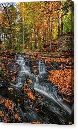 Vaughan Brook In Autumn Canvas Print by Rick Berk