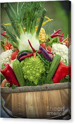 Veg Trug Canvas Print by Tim Gainey