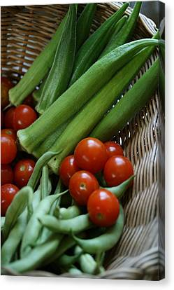 Vegetable Basket Canvas Print by Karen Fowler