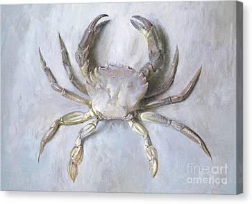 Shell Fish Canvas Print - Velvet Crab by John Ruskin