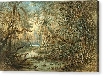 Venezuelan Landscape Canvas Print by Anton Goering