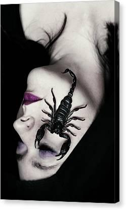 Beautiful Woman Face Canvas Print - Venomous by Cambion Art