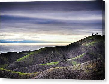 Ventura Two Sisters Canvas Print by Kyle Hanson