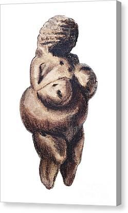 Venus - Fertility Symbol Canvas Print by Michal Boubin