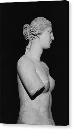 Venus De Milo Canvas Print by Greek School