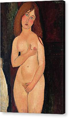 Venus Or Standing Nude Or Nude Medici Canvas Print by Amedeo Modigliani