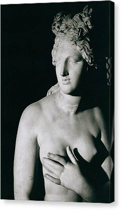 Venus Pudica  Canvas Print by Unknown