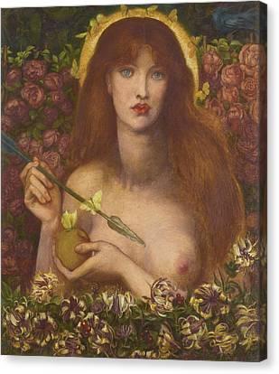 Venus Verticordia Canvas Print