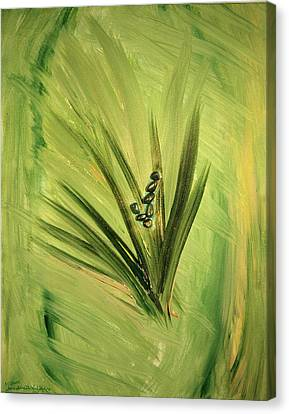 Ver Vi An Canvas Print by Emerald GreenForest