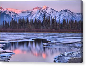 Canvas Print - Vermilion Lakes Pink Reflections by Adam Jewell