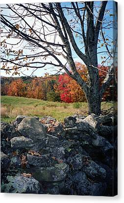Canvas Print featuring the photograph Vermont Autumn by John Scates