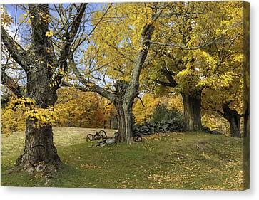 Vermont's Rural Countryside Canvas Print