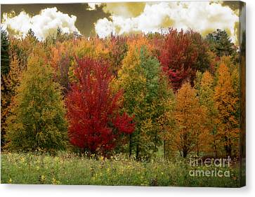 Vermont Drive Canvas Print by Mindy Sommers