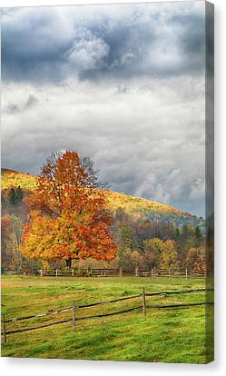 Canvas Print featuring the photograph Vermont Fall Colors After The Rain by Jeff Folger