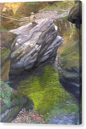 Vermont Fisherman Canvas Print by Laurel Ellis