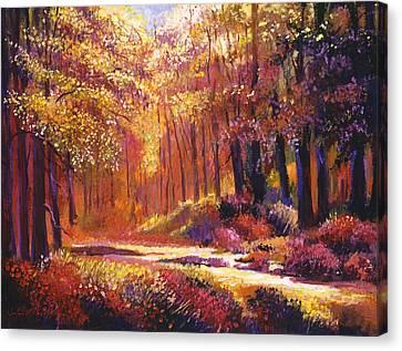 Vermont Paintbox Forest Canvas Print