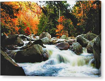 Vermonts Fall Color Rapids Canvas Print by Jeff Folger