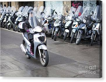 Vespa In Florence Canvas Print by Andre Goncalves