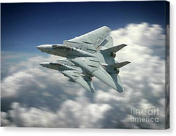 Vf-101 Grim Reapers Canvas Print