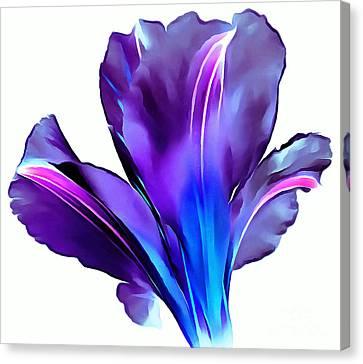 Digital Paint Flower Canvas Print - Vibrant Amaryllis by Krissy Katsimbras