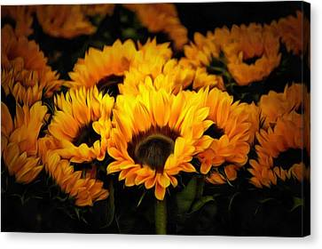 Vibrant Contemporary Orange Sunflowers Summer Painting Canvas Print by Wall Art Prints